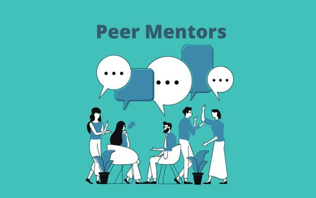 Cố vấn ngang hàng (Peer Mentors)