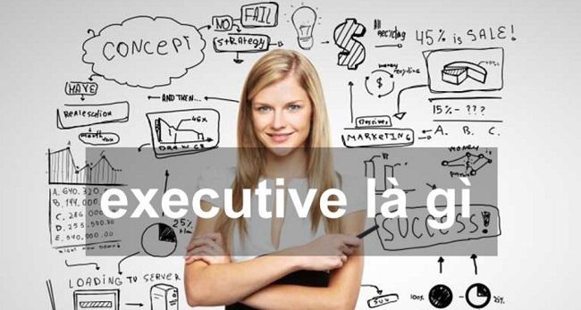 Khái niệm executive