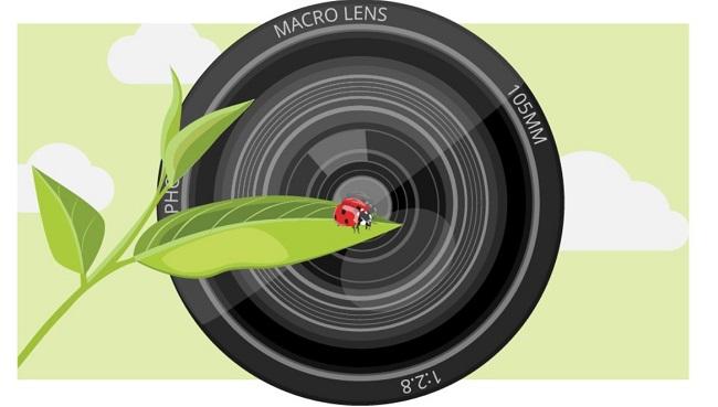 Ống kính macro là gì