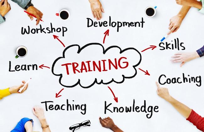 training là gì